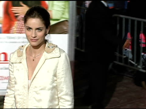 amanda peet at the 'spanglish' premiere at the mann village theatre in westwood california on december 9 2004 - spanglish stock videos and b-roll footage
