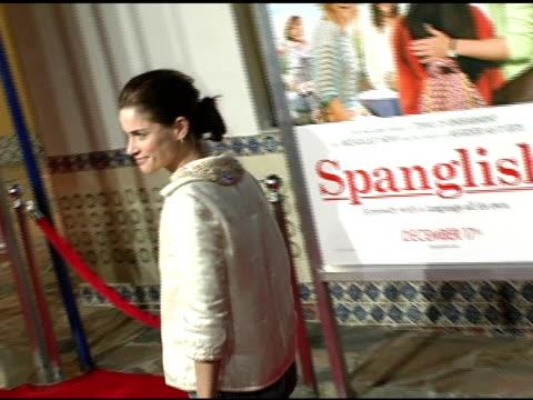 amanda peet at the 'spanglish' premiere at the mann village theatre in westwood california on december 9 2004 - amanda peet stock videos & royalty-free footage