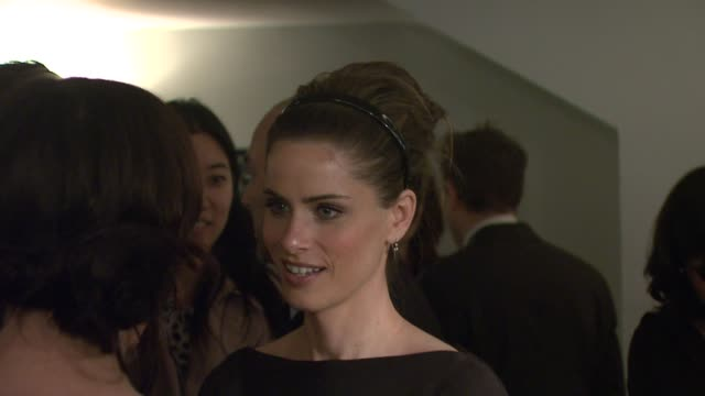 amanda peet at the 'the ex' premiere at director's guild of america in new york, new york on may 3, 2007. - director's guild of america stock videos & royalty-free footage