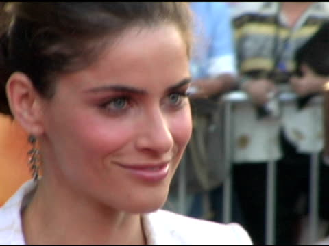 amanda peet at the 'we don't live here anymore' los angeles premiere arrivals at director's guild of america in hollywood, california on august 5,... - director's guild of america stock videos & royalty-free footage