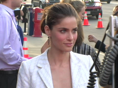 amanda peet at the we dont live here anymore los angeles premiere arrivals at directors guild of america in hollywood california - amanda peet stock videos & royalty-free footage