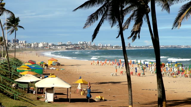 amaralina beach in salvador - bahia state stock videos and b-roll footage