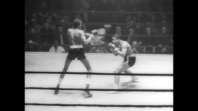 amateur fighters box during the golden gloves competition / cecil lucky fights freddy almer / lucky wins / crowd watches fight - glove box stock videos & royalty-free footage