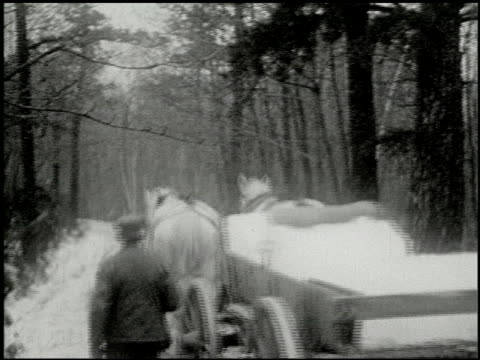 vidéos et rushes de [amateur film: ice harvest, pocono manor, 1919] - 7 of 10 - 1910 1919