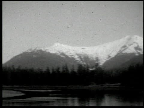 [amateur film: laubscher collection: pacific northwest and san francisco] - 3 of 16 - laubscher collection stock videos & royalty-free footage