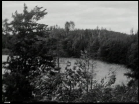 [amateur film: minnesota, picnic] - 7 of 15 - see other clips from this shoot 2040 stock videos and b-roll footage