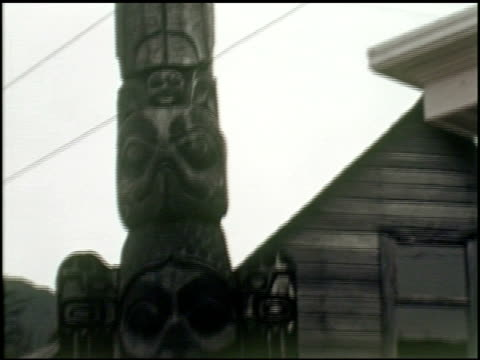 [amateur film: 'my alaska cruise'] - 14 of 15 - my alaska cruise stock videos & royalty-free footage
