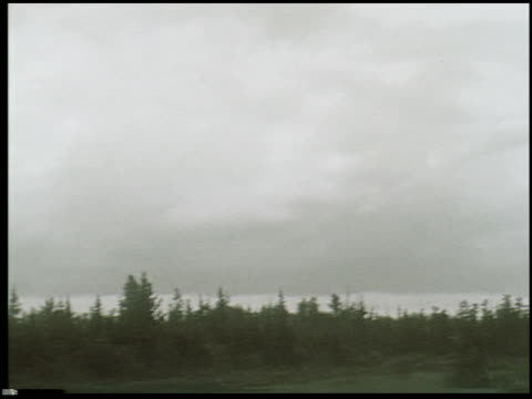 [amateur film: northern michigan, reel 2] - 6 of 24 - see other clips from this shoot 2044 stock videos & royalty-free footage