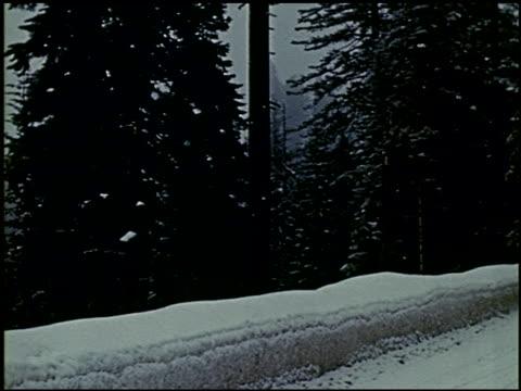 [amateur film: ransohoff collection: 'life on the farm' / del monte 1940 / yosemite] - 15 of 17 - この撮影のクリップをもっと見る 2047点の映像素材/bロール