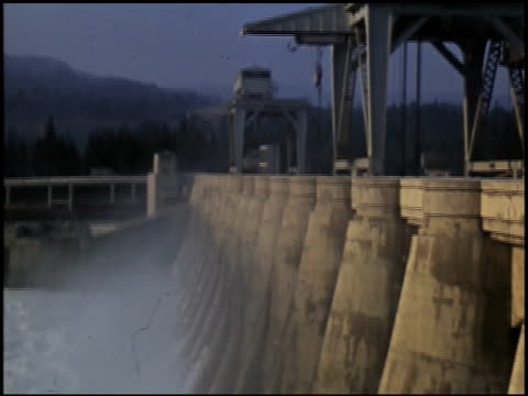 vídeos de stock, filmes e b-roll de [amateur film: redwoods and dude ranch] - 5 of 11 - sequoia sempervirens