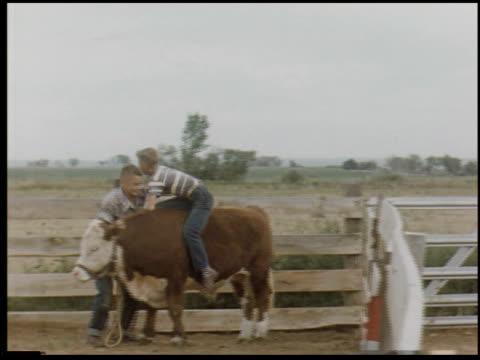 [amateur film: san francisco, santa cruz and farm, 1956] - 8 of 10 - この撮影のクリップをもっと見る 2050点の映像素材/bロール