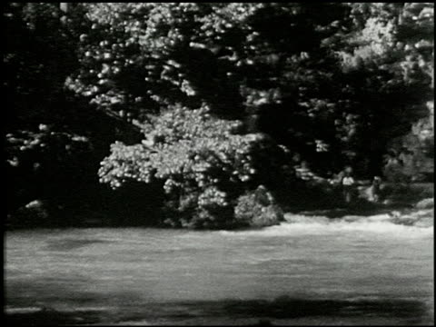 [amateur film: seck collection: reel 6] - 15 of 16 - andere clips dieser aufnahmen anzeigen 2052 stock-videos und b-roll-filmmaterial