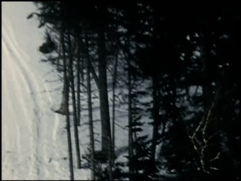 [amateur film: skiing] - 2 of 4 - see other clips from this shoot 2053 stock videos & royalty-free footage