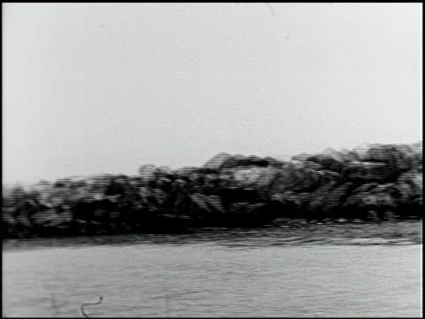 vídeos de stock, filmes e b-roll de [amateur film: southern california] - 9 of 17 - veja outros clipes desta filmagem 2054
