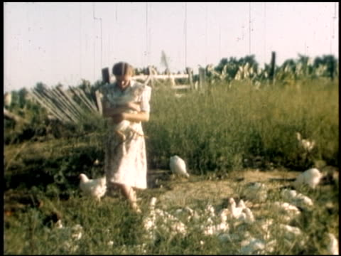 [amateur film: texas farm family] - 11 of 11 - altri spezzoni di questa ripresa 2056 video stock e b–roll