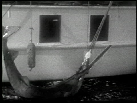 [amateur film: 'with rod and harpoon to the enchanted land of sport,' january 1930, part i] - 4 of 6 - harpoon stock videos and b-roll footage