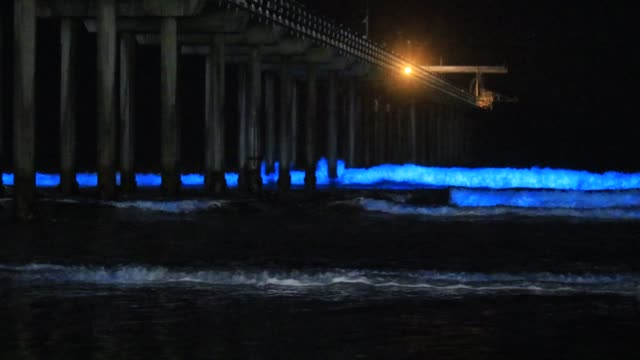 amazing bioluminescent tide makes every wave glow at scripps pier in la jolla, california - pacific ocean stock videos & royalty-free footage
