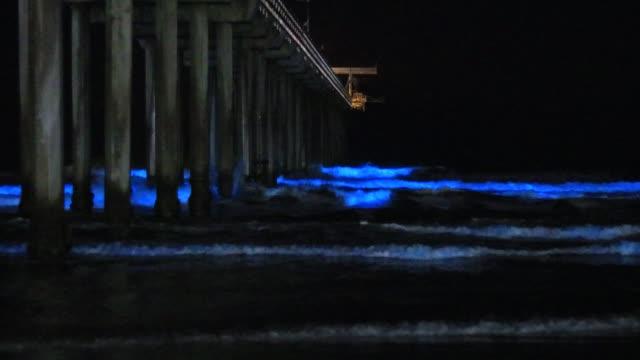 amazing bioluminescent tide makes every wave glow at scripps pier in la jolla, california - プランクトン点の映像素材/bロール