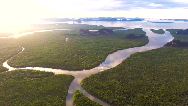 Amazing Mangrove Forest and mountains in Andaman Sea, Phang-Nga bay, Thailand, Aerial video