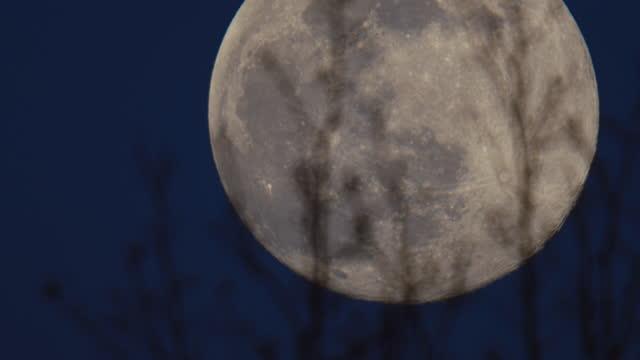 vídeos de stock, filmes e b-roll de incrível tiro de uma super lua - astronomia