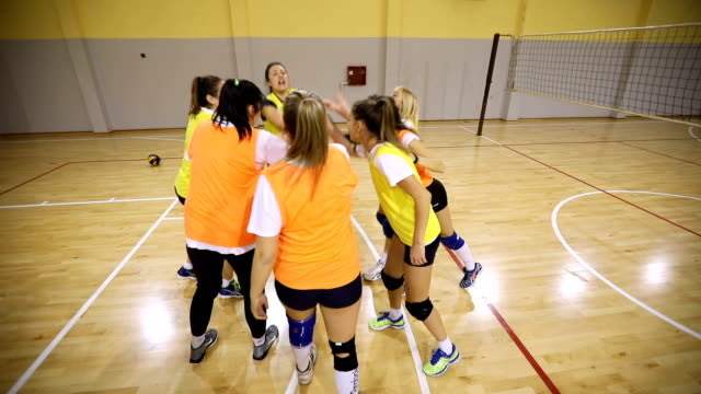 amazing team spirit - volleyball sport stock videos and b-roll footage