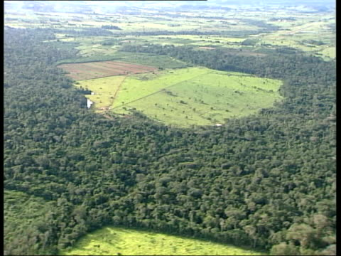 Cuiaba city / Aerial views of Amazon Rainforest / Enawene Nawe Indian village More AIR VIEWS vast deforested areas of rainforest with remains of tree...