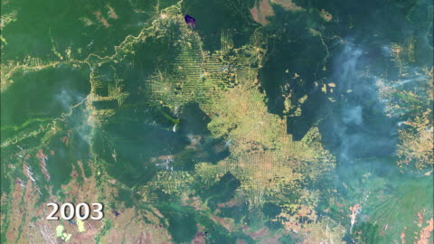 amazon deforestation, 2000-2012 - south america stock-videos und b-roll-filmmaterial