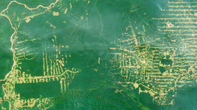"""Amazon deforestation, Brazil"""