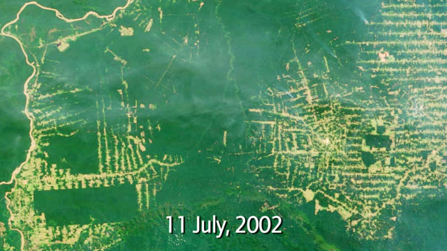 "stockvideo's en b-roll-footage met ""amazon deforestation, brazil"" - brazilië"