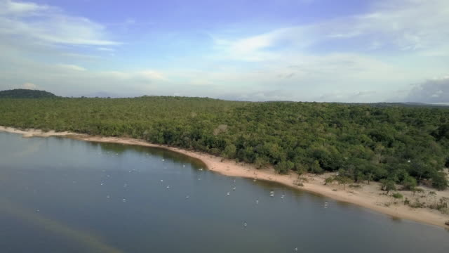 Amazon Forest by the Rio Tapajos, Track Forward