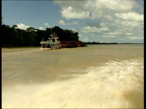 vídeos de stock, filmes e b-roll de logging activity large barge carrying huge load of wood along river seen from moving boat/ vars trees and open fields on banks of river seen from... - moving activity