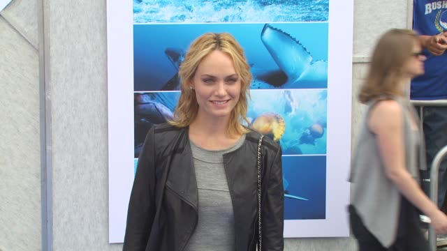 amber valletta at the 'oceans' premiere at hollywood ca - amber valletta stock videos and b-roll footage