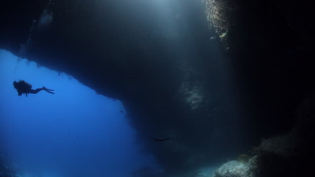 Ambient light beams flicker in the water as a diver explores the Blue Hole