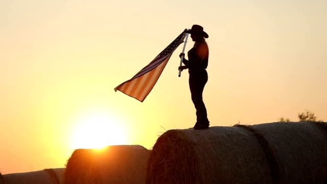 american beauty waving an american flag - hay stock videos & royalty-free footage