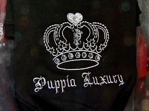 vídeos de stock, filmes e b-roll de american billionaire leona helmsley leaves her pet dog twelve million dollars england int clothing and crystalstudded collars for dogs - pet clothing