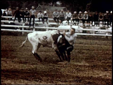 american cowboy - 23 of 29 - see other clips from this shoot 2081 stock videos & royalty-free footage
