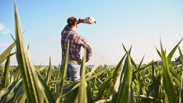 vidéos et rushes de slo missouri american agriculteur dans le champ - fatigué