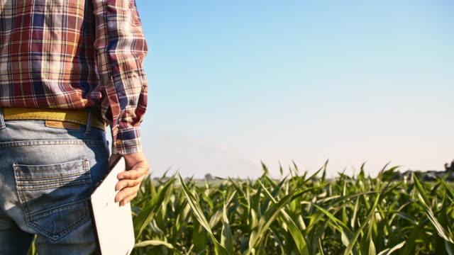 SLO MO Amerikaanse boer met een tablet in het veld