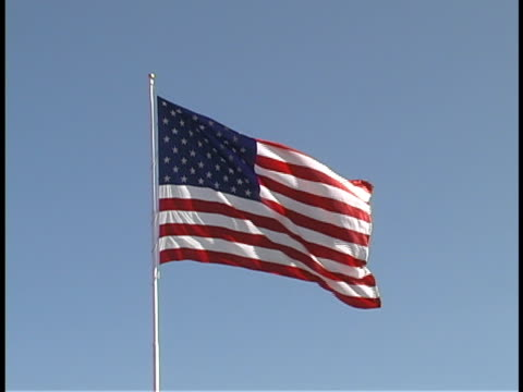 american flag - saluting stock videos & royalty-free footage