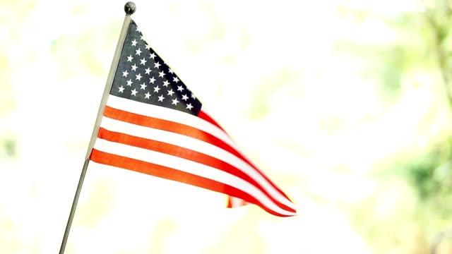 American flag waving in the breeze.