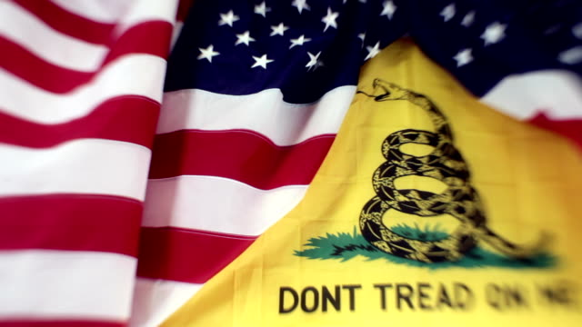 american flag with gadsden tea party - tea party stock videos and b-roll footage