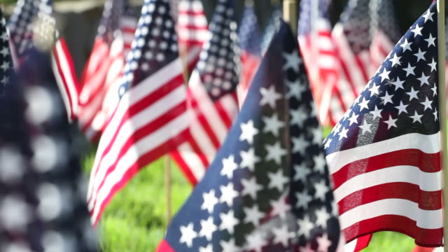 American Flags Blow in Breeze Track Right ECU