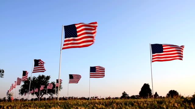 stockvideo's en b-roll-footage met american flags - army