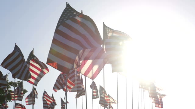 stockvideo's en b-roll-footage met american flags waving in the wind - amerikaanse vlag