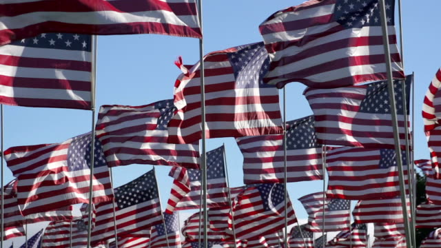 american flags waving in the wind - september 11 2001 attacks stock videos and b-roll footage
