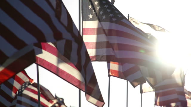 stockvideo's en b-roll-footage met american flags waving in the wind - verenigde staten