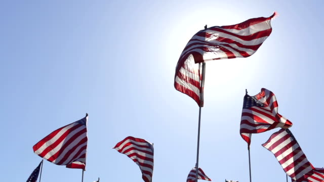 american flags waving in the wind - flag blowing in the wind stock videos & royalty-free footage