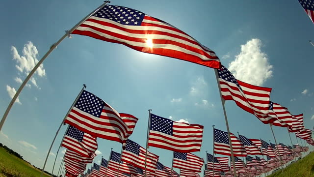 american flags waving in the wind - fourth of july stock videos & royalty-free footage