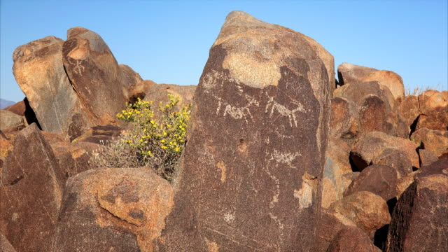 American Indian Petroglyphs at Signal Hill in Saguaro National Park