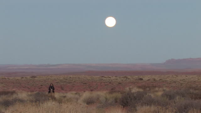 ws, ds, american indian woman riding horse in red desert, utah, usa - ネイティブアメリカン点の映像素材/bロール